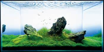 Takashi Amano Aquascape アクアリウム 花枝保険事務所 アクアリウム 水槽画像まとめ Naver まとめ