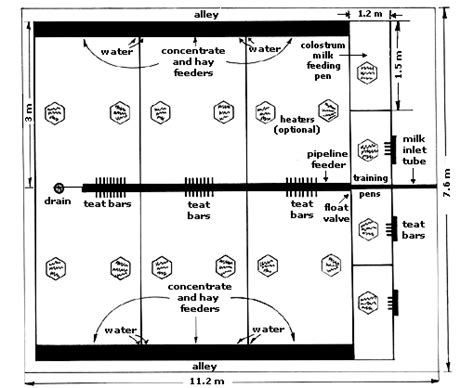 goat barn floor plans how to build a goat house plans