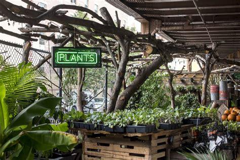 urban garden ideas