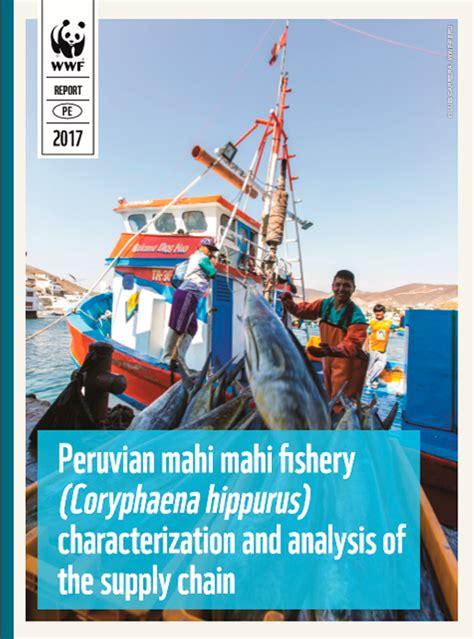 cadenas productivas en peru la pesquer 237 a del perico en el per 250 caracterizaci 243 n y