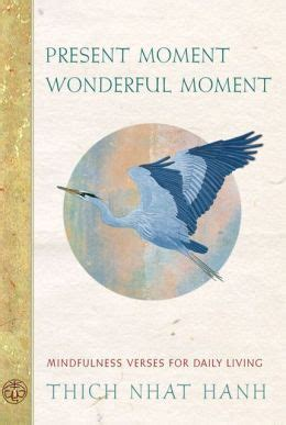a daily dose of mindful moments applying the science of mindfulness and happiness books present moment wonderful moment mindfulness verses for