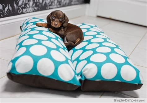 hot dog bun dog bed dachshund hot dog bun doggie bed pictures dog breeds picture