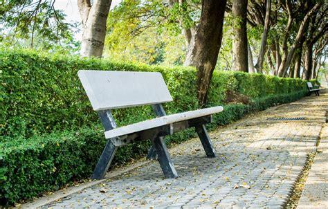 garden benches concrete concrete garden benches