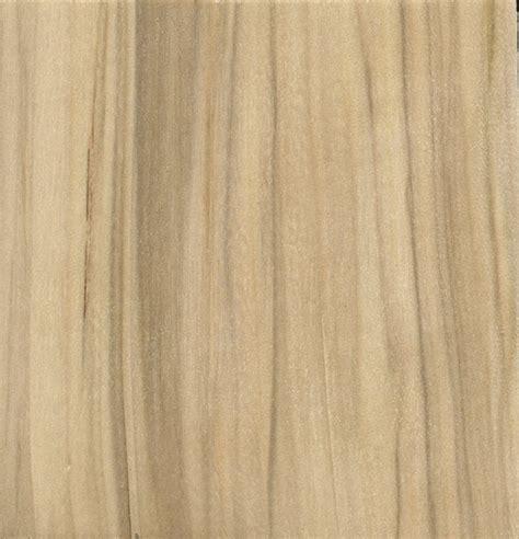 balsam poplar the wood database lumber identification