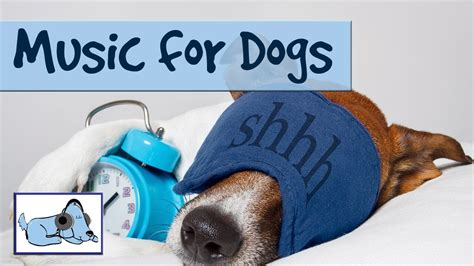 songs for dogs 15 minutes of calming to make dogs sleep relaxing soothing