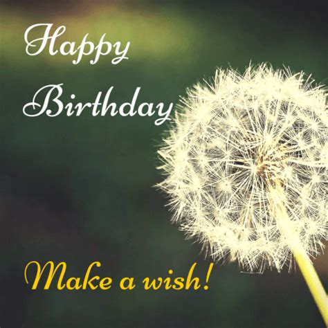 Happy Birthday Make A Wish Ultimate List Of Romantic Wishes For Birthday Occasions
