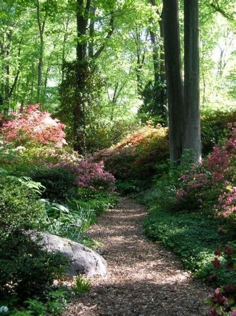 8 best images about wooded pathways on pinterest garden decorations search and the back