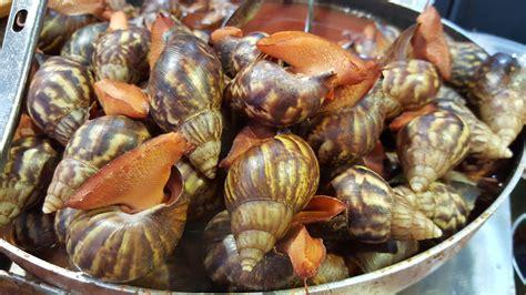 Kerang Remis gambar hidangan makanan laut invertebrata remis
