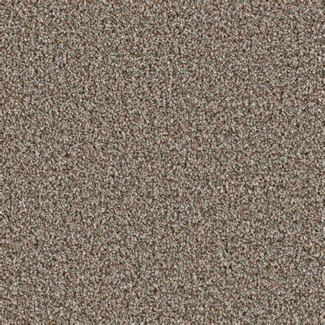 home decorators carpet home decorators collection carpet sle palace i color sargent texture 8 in x 8 in ef