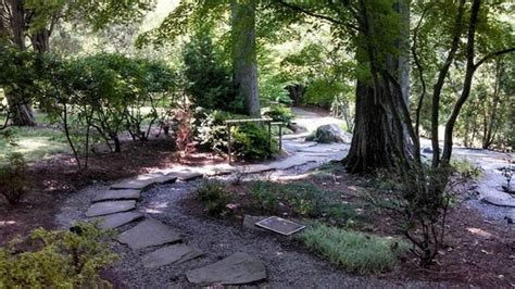 Cheekwood Botanical Gardens Cheekwood Picture Of Cheekwood Botanical Gardens Museum Of Nashville Tripadvisor