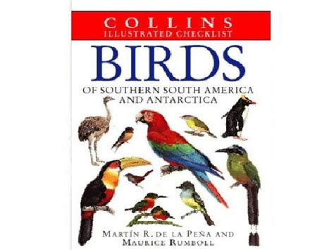 insight guides south america books seriema nature tours birding argentina birding brazil