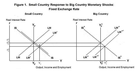 commercial model rates small country response to big country monetary shocks