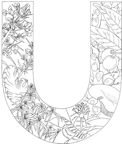 U Coloring Pages Free by Letter U With Plants Coloring Page Free Printable