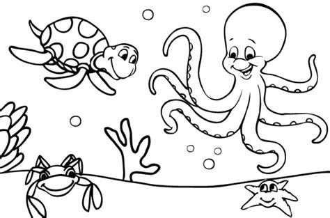 el ecosistema colouring pages dibujos de animales marinos para colorear