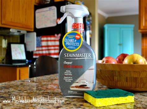 Stainmasters Carpet Upholstery Cleaning by Mrs Weber S Neighborhood