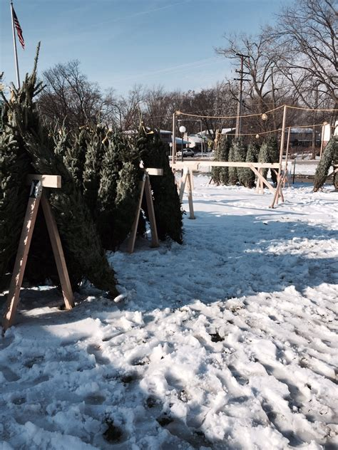 christmas tree lots chicago tree lot 4 171 cbs chicago