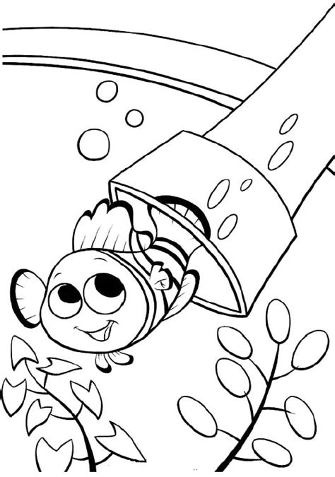 printable nemo the fish coloring pages finding nemo