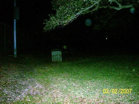 after paranormal investigations true cases of the ntparanormal team books paranormal cases 5 miami ghost chronicles
