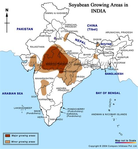In India by Seed Industry India Rapeseed India Soyabean
