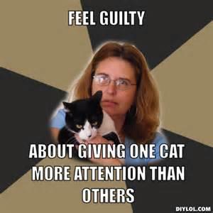 Guilt Meme - wp images cat memes post 19
