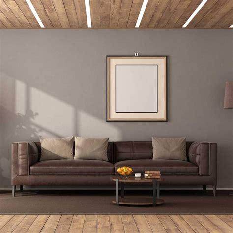 color walls    brown sofa