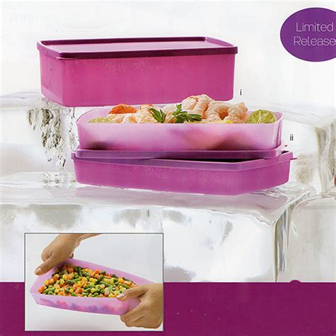 Tupperware Frozen Set frozen rectangular set tupperware katalog promo tupperware