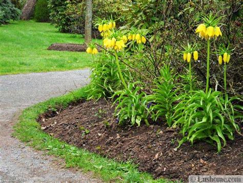 spring garden ideas spring garden design 25 spring flower beds and yard