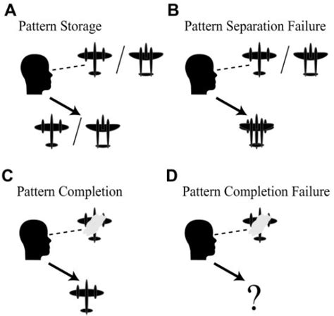 Pattern Completion Definition | figure 1 imbalanced pattern completion vs separation in