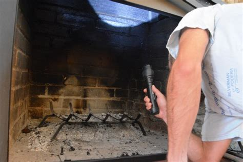 How To Get Bird Out Of Fireplace by How To Get A Bird Out Of Your Chimney In 12 Simple Steps