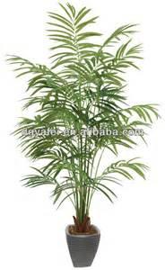 plante verte d interieur haute atlub
