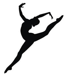 Ebay Wall Sticker 755 best gymnastics images on pinterest gymnastics stuff