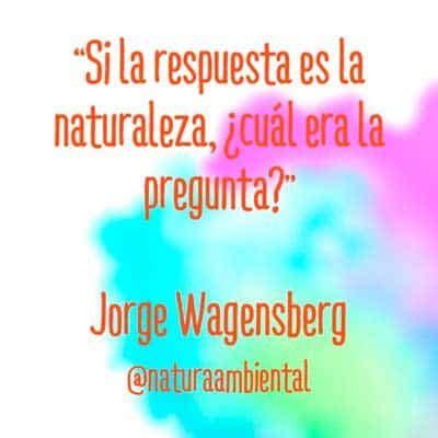 preguntas sobre el medio ambiente de si o no frases sobre el medio ambiente y la naturaleza