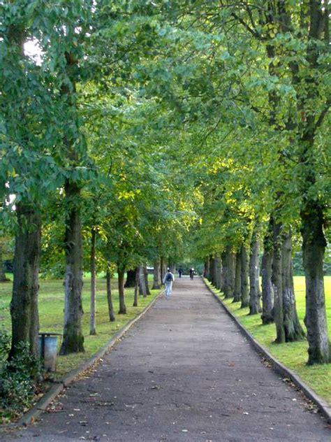 Landscape Park Definition Avenue Landscape