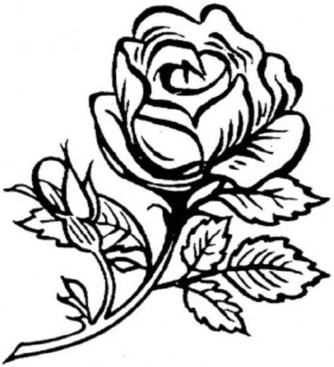 pretty roses colouring pages