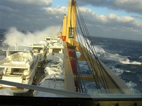 boat shipping line yacht transport shipping boats yacht trans lines