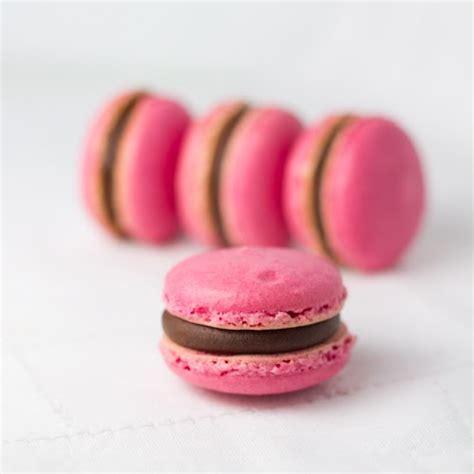 el macaron perfecto 841705703x objetivo cupcake perfecto y entonces sucedi 243 lo que nunca pens 233 que suceder 237 a macarons de