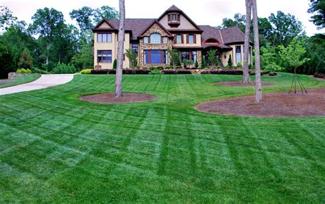 what does backyard mean fescue zoysia bermuda turf fontaine landscaping
