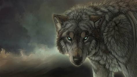 hd wallpapers 1920x1080 wolf wolf wallpapers 1920x1080 wallpaper cave
