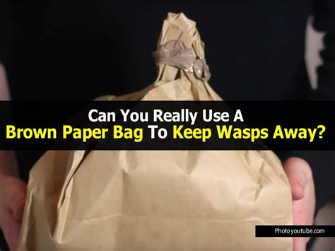 how to keep wasps away from house can you really use a brown paper bag to keep wasps away
