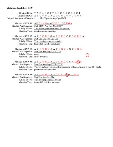 Dna Mutations Practice Worksheet Answers by 28 Mutation Worksheet Answers Mutations Worksheet