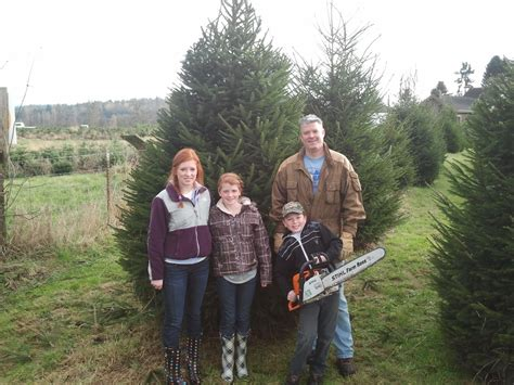 christmas tree farm happy valleyvadelaide tree farm happy valley my