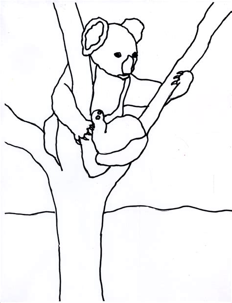 eucalyptus tree coloring page a koala s world