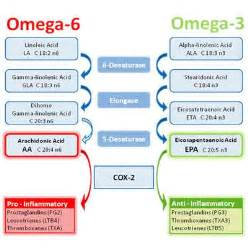 alimenti ricchi di omega 3 e 6 is there a difference between smoked salmon and frozen