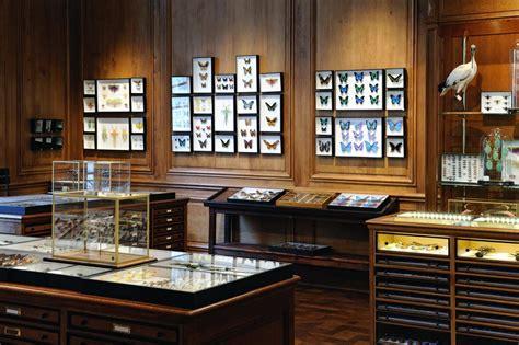 Cabinet Univers by L Univers Bestial De La Maison Deyrolle Sur Un Fil