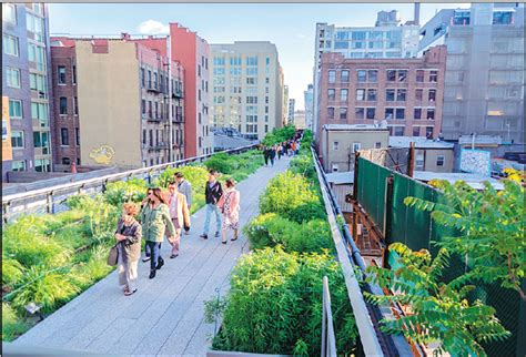 The High Line Has Become A Thick Green Mane Across The New