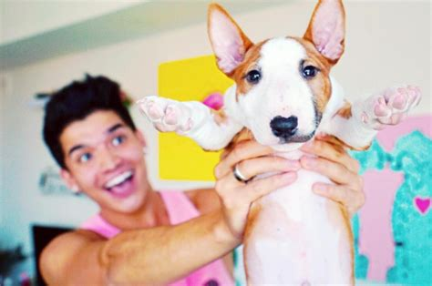 baby pug alex wassabi youtuber laurdiy absolutely all things puppies get leashed magazine