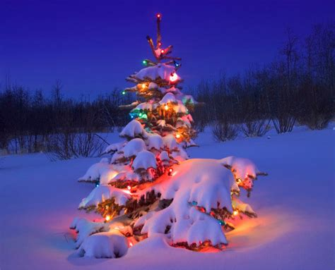 advent activities    christmas light display