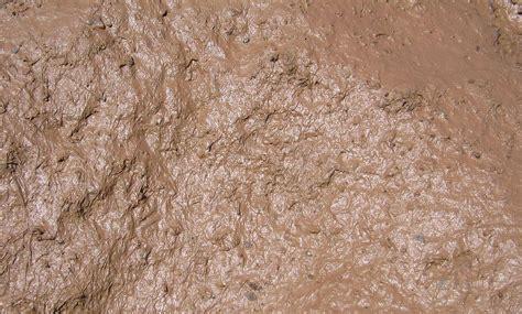 Clay Mud mud simple the free encyclopedia