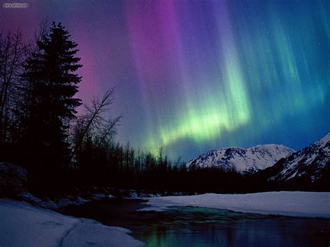 nature northern lights portage river valley alaska