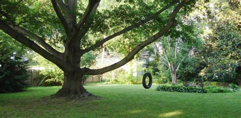 how to attach a swing to a tree branch how to install a tree swing safely today s homeowner